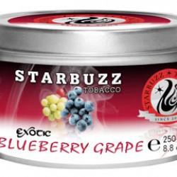 Starbuzz  Blueberry Grape