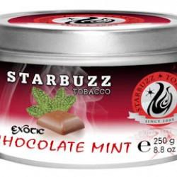 Starbuzz  Chocolate Mint